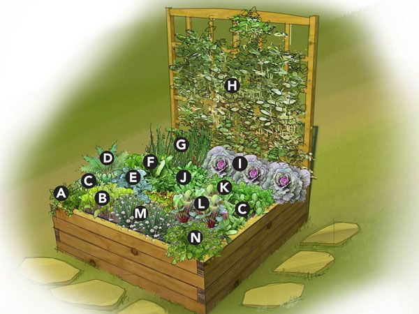 This Small Space Garden Plan Features A 4'x4' Raised Bed Jammed