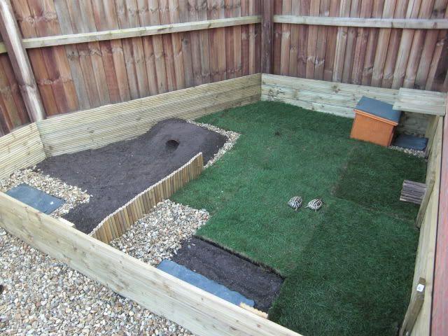 Outdoor Habitat For Tortoise Outdoor Tortoise Enclosure The