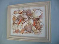 Framed Seashell Art Collage on Canvas by seasideshells ...