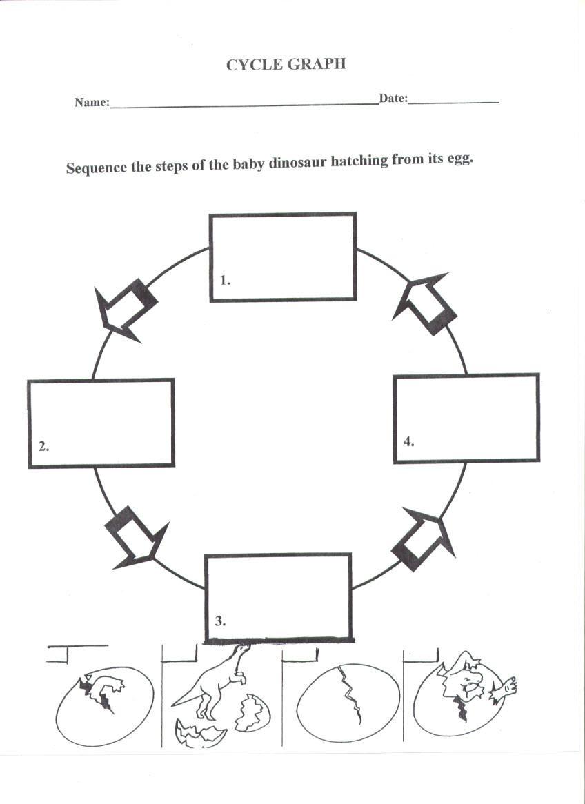 worksheet. Life Cycle Of A Plant Worksheet. Worksheet Fun