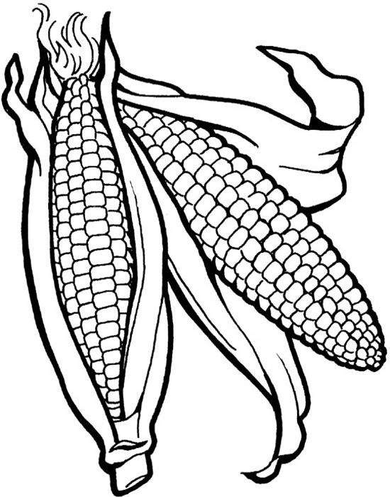 Corn The Vegetables Healthy Food Coloring Pages