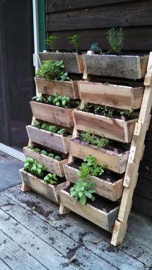 Jardin Sur Palette Home - Gardening