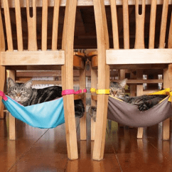 Cat Hammock Under Chair Reclining Patio Chairs And Table Free Tree Plans | Hammock, Homemade