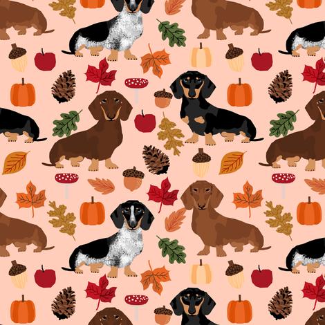 Fall Wallpaper Dog Weenie Dachshund Dog Doxie Pumpkin Autumn Leaves Leaf Pinecones
