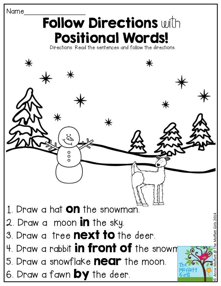 Follow Directions with Positional Words- such a FUN