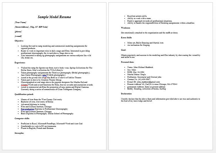 Free Resume Templates For Word The Grid System Resume