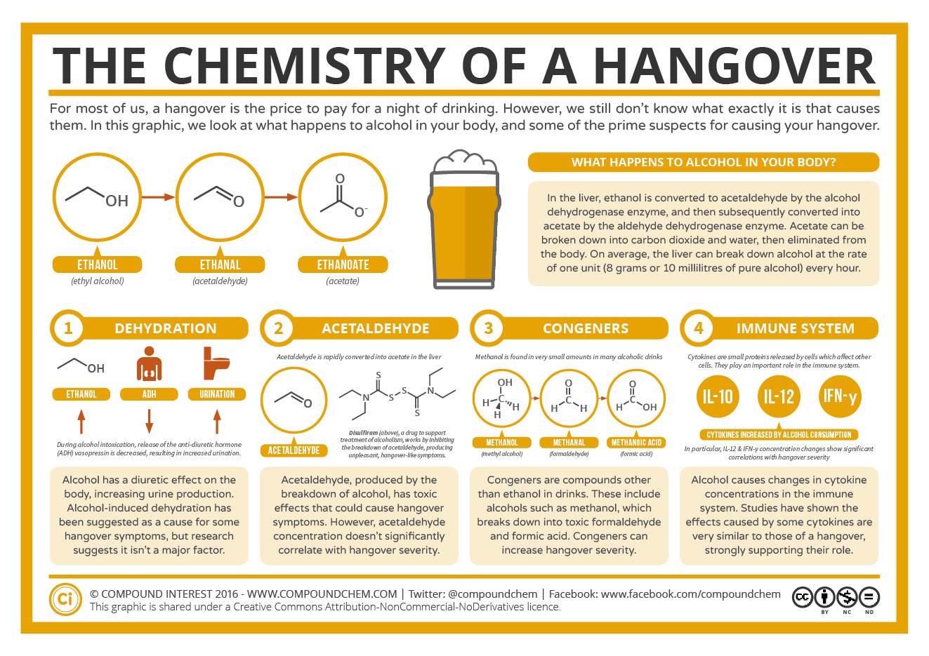 The Chemistry Of A Hangover Infographic If You Have Ever