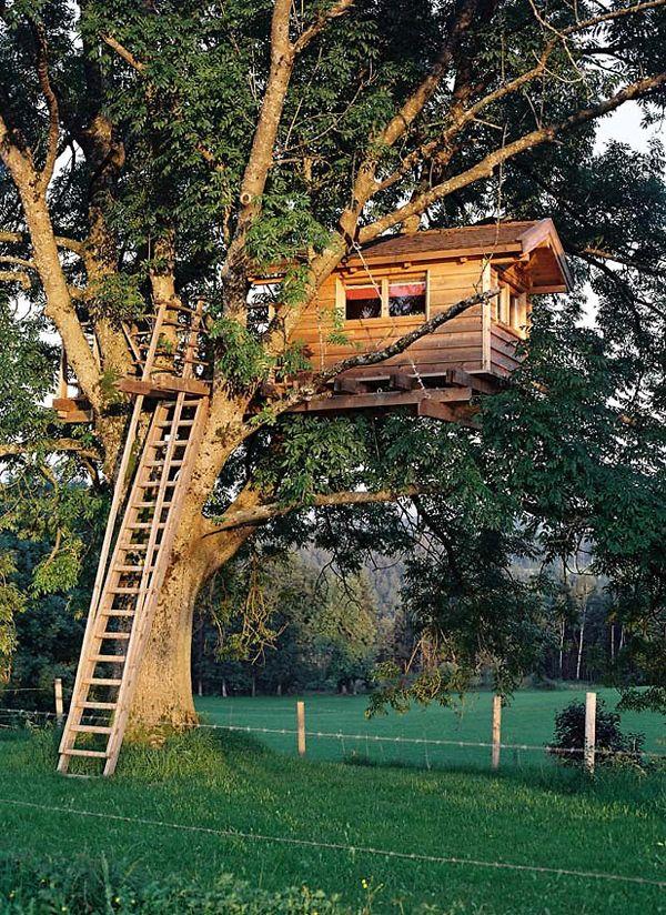 Awesome Treehouse Backyard Garden Treehouses Pinterest