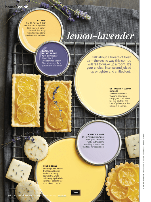 Better Homes And Gardens February 2017 Paint Lemon Lavender Freshen A Room With The Dynamic Duo Of It S Color Palette You Can