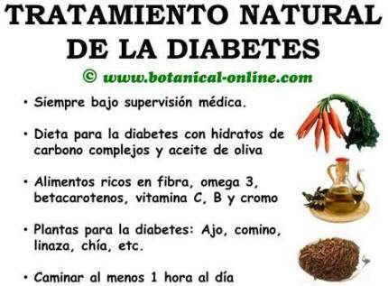 Tratamiento Natural para la Diabetes | Salud y bienestar ...