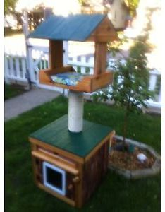 Heated outdoor cat house also cats home idea pinterest houses rh