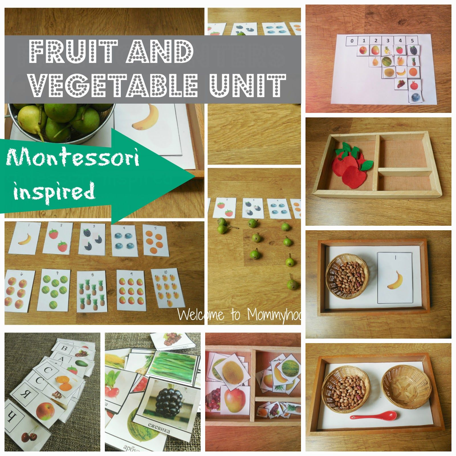 Montessori Toddler Activities Fruit And Vegetables Unit