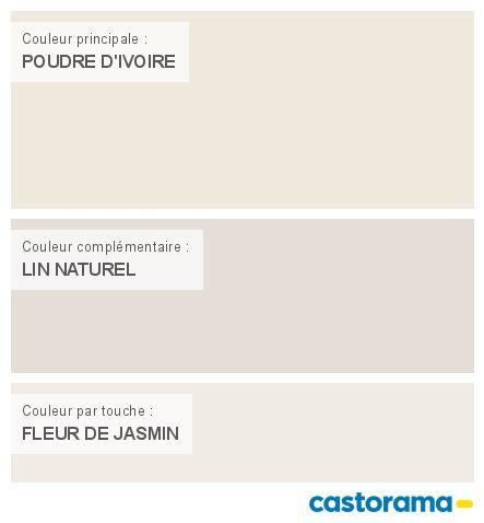 Castorama Nuancier Peinture Mon Harmonie Peinture POUDRE