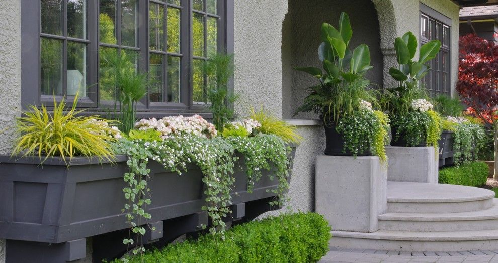 Window Box Planters Landscape Traditional With Container Plants