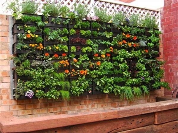 Jardins Verticais Com Paletes Cachibra Banheiras Hidromassagem