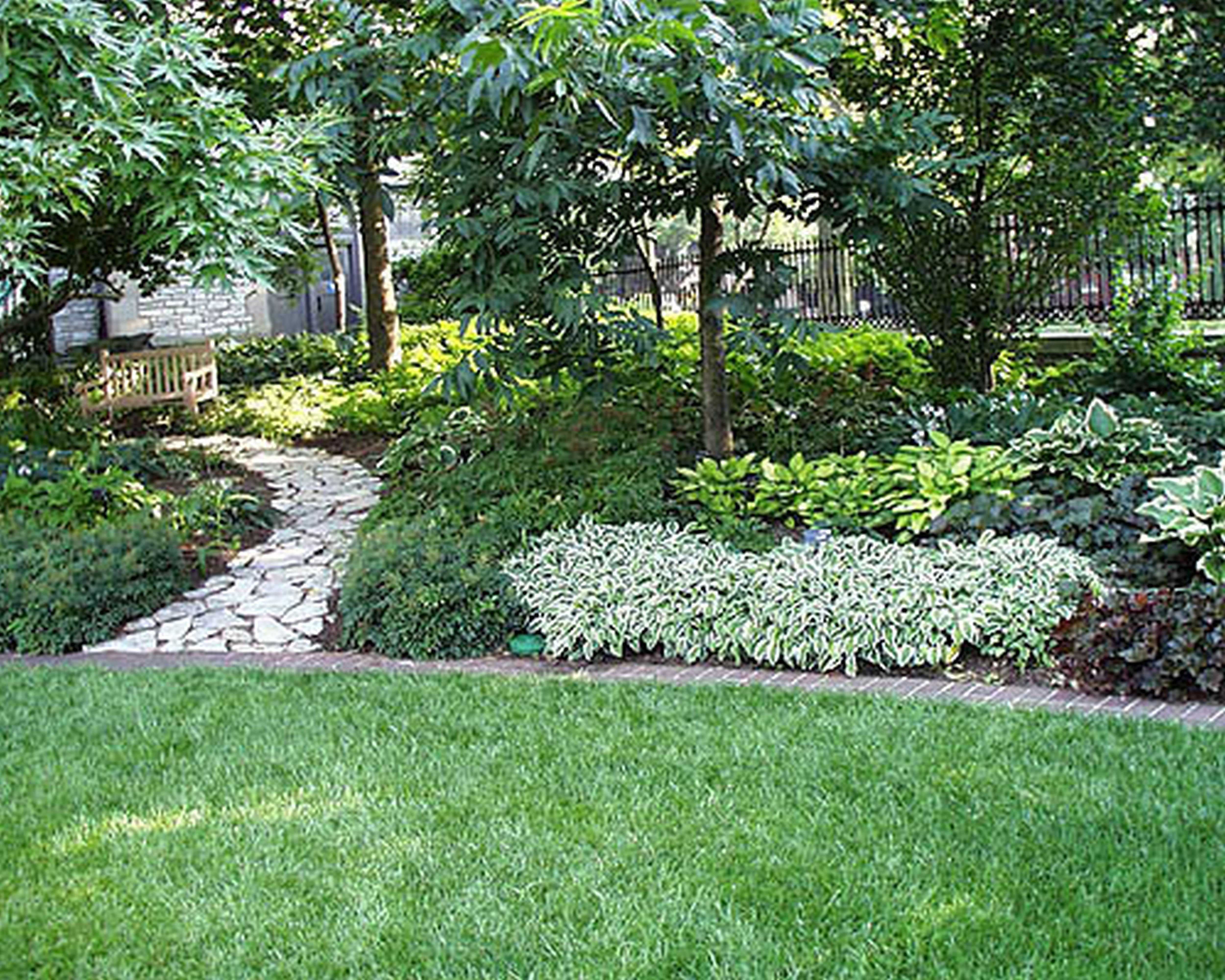 Driveway Planting Ideas Nz Google Search Landscaping Ideas