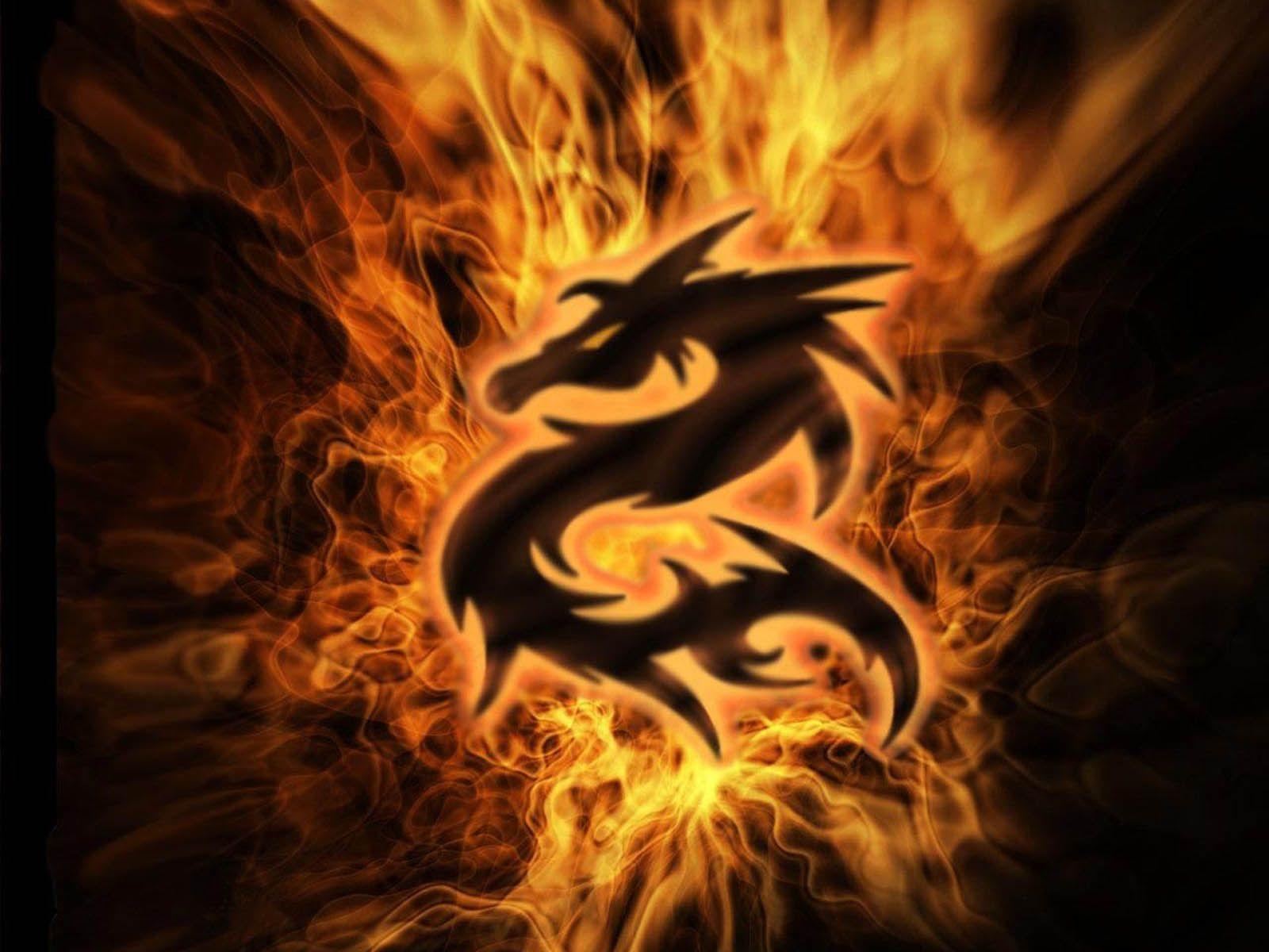 free dragons wallpaper | hd wallpapers | pinterest | wallpaper