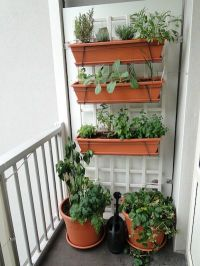 A vegetable garden on a small balcony -- hanging planters ...