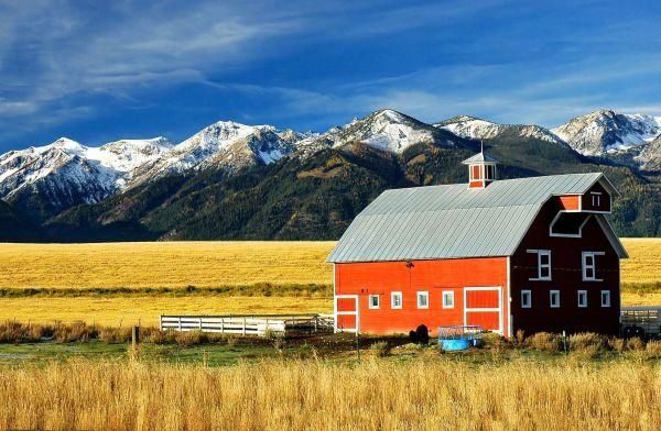Farm Landscape - Kid