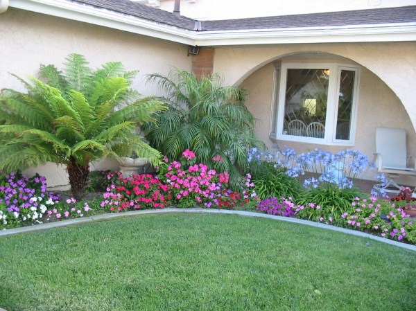 florida landscaping ideas south