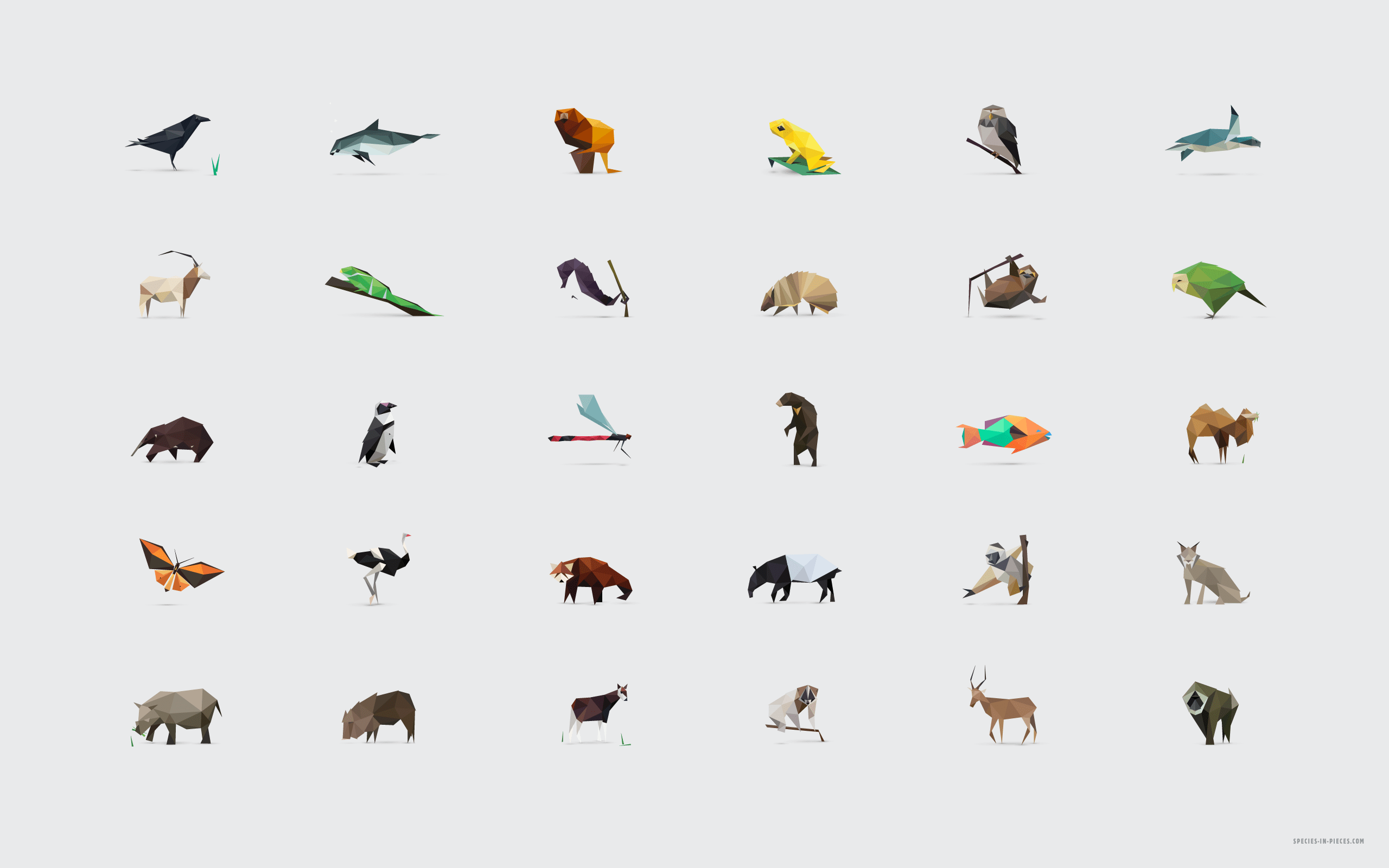 Drawing Animal Geometric Shapes