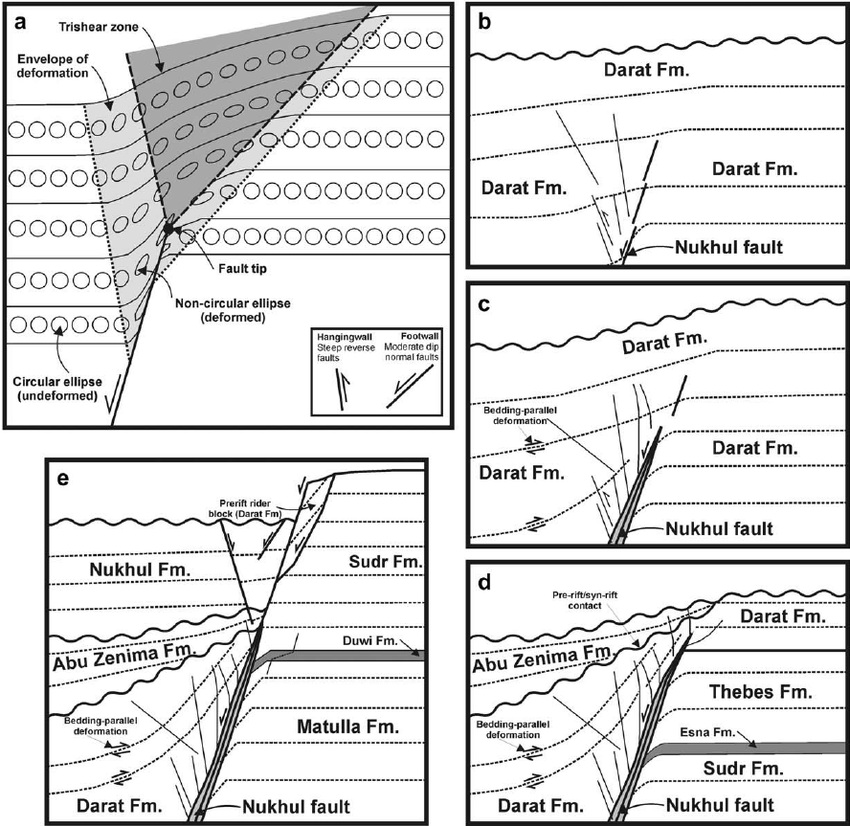 Geometry and architecture of faults in a syn-rift normal