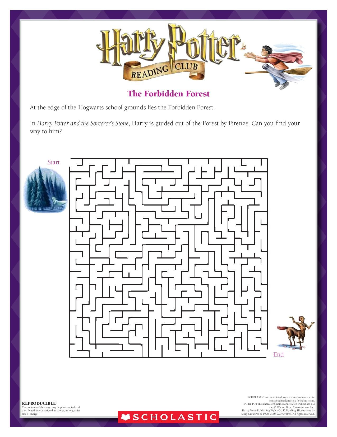 The Forbidden Forest Maze Can You Navigate Your Way Out Of The Forbidden Forest Download By