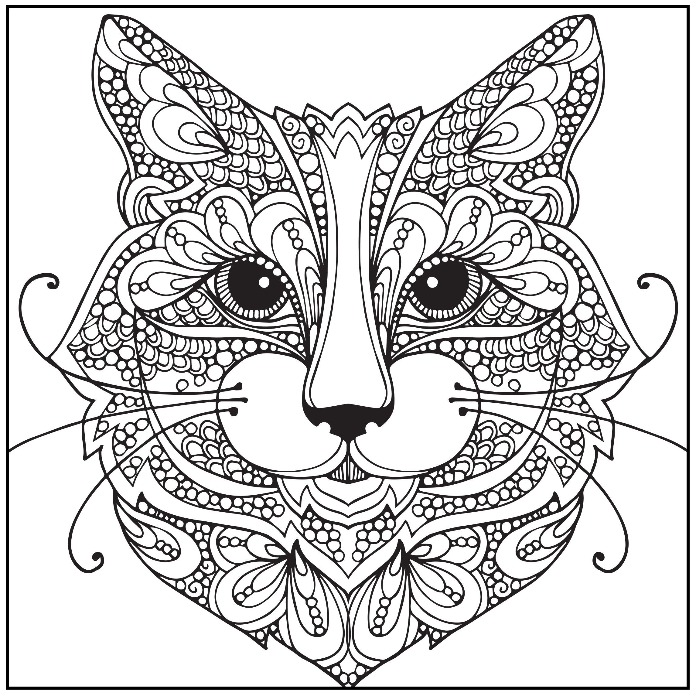 Directly From Site>> Amazon Adult Coloring Book Wild About