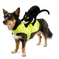 Top Paw Pet Halloween Black Cat Rider Costume   Costumes ...