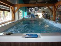 indoor garage pool house | AGP Swim Spas beat Swimming ...