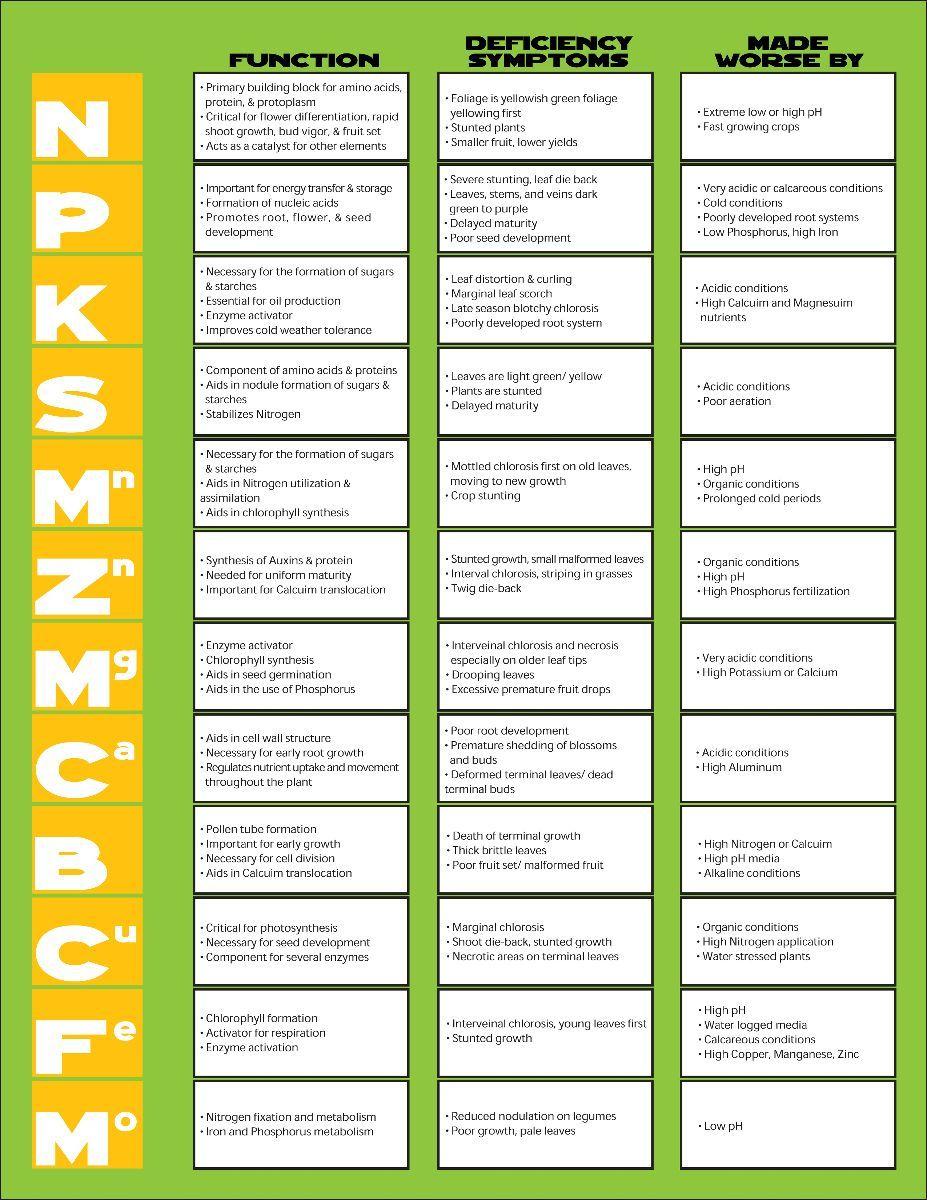 Vegetable Plant Fertilizer Chart