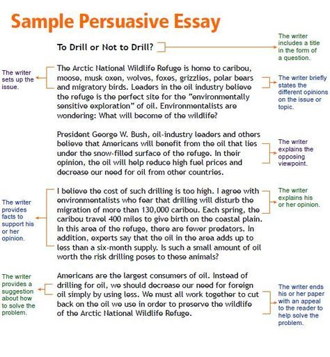 Persuasive Essay Topics Kids Opinion Article Examples For Kids