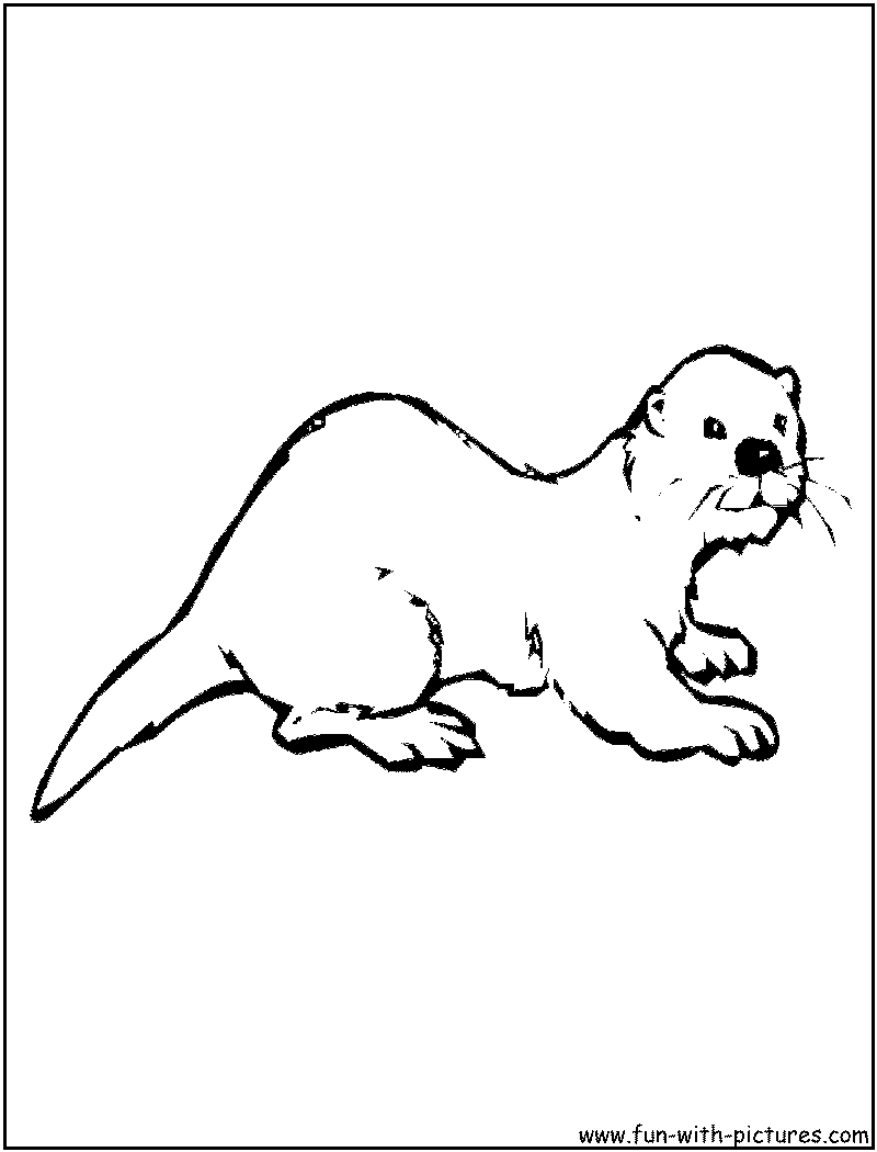 otter coloring page of otter  preschool  pinterest