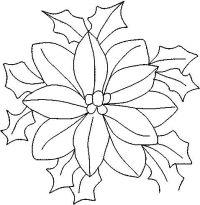 dibujos flor de nochebuena para colorear - Buscar con ...