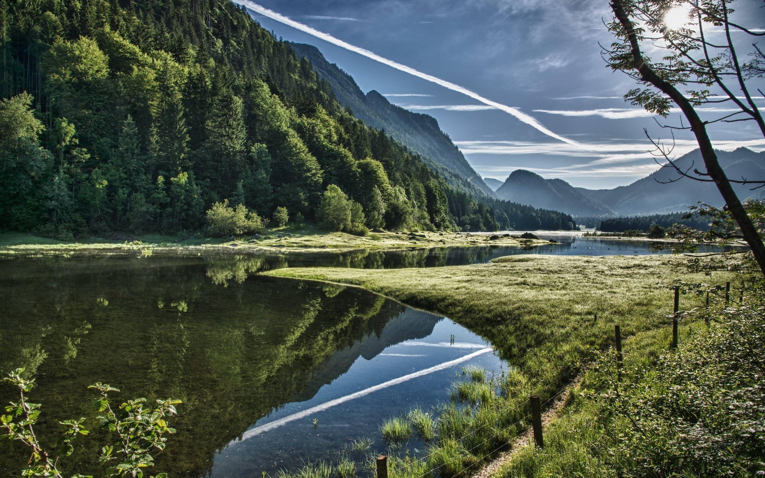 Landscape Decor Ideas