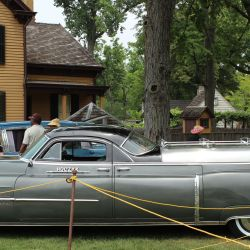 Cadillac Flower Car Hearse Gardening Flower And Vegetables