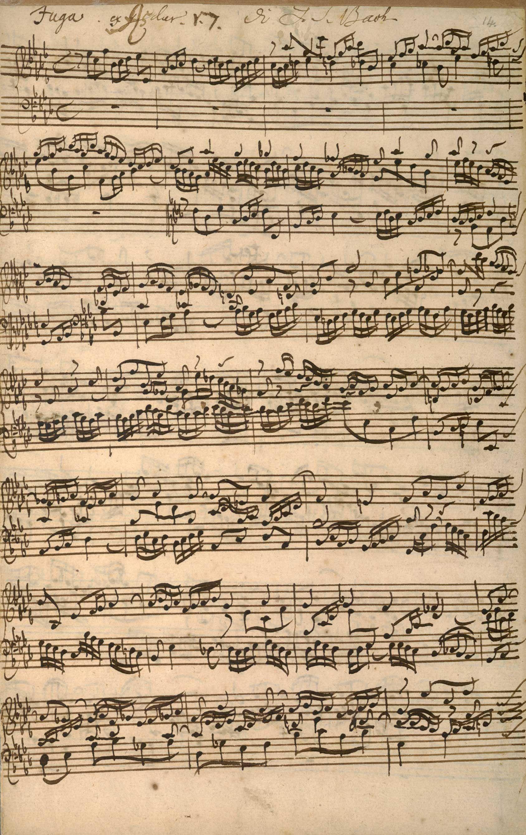 Js Bach M Cript