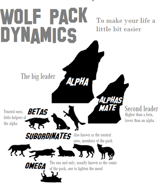 Wolf Pack Dynamics. If people adopted this philosophy in