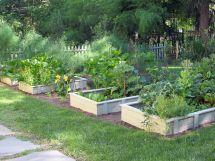 Raised Bed Vegetable Garden Design Ideas