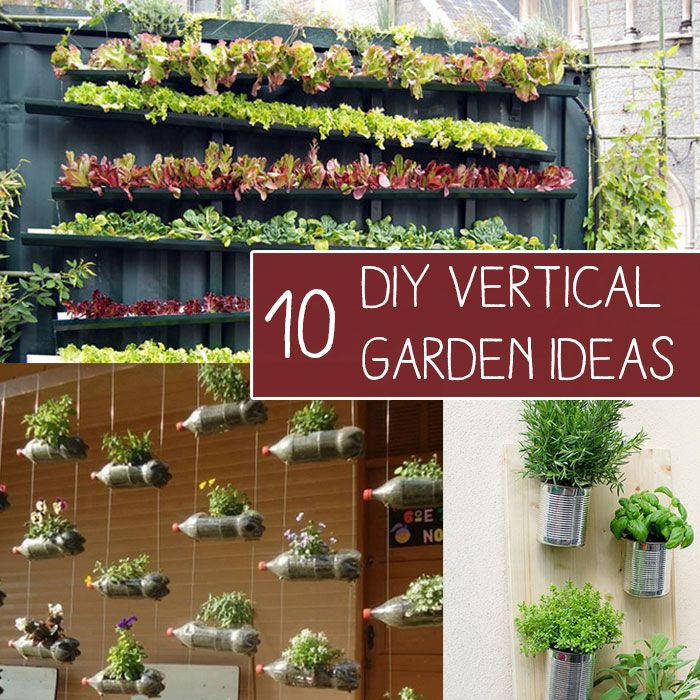 10 Easy DIY Vertical Garden Ideas Off Grid Pinterest Gardens