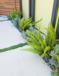 Creative Landscape Design for a Renovated Eichler in ...