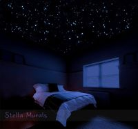 Glow in the Dark Star Stickers for Realistic Star Ceiling ...
