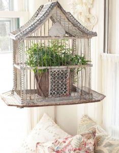 My inner landscape also  use  vintage bird cage as plant hanger rh pinterest