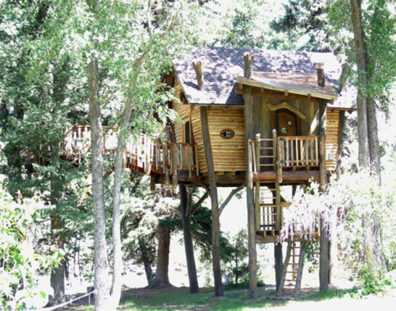 Cool Tree Houses Kids Tree House Designs Small And Artistic