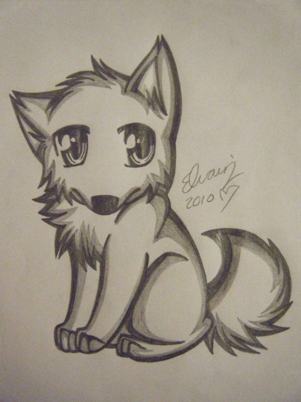 Anime Wolf Drawing