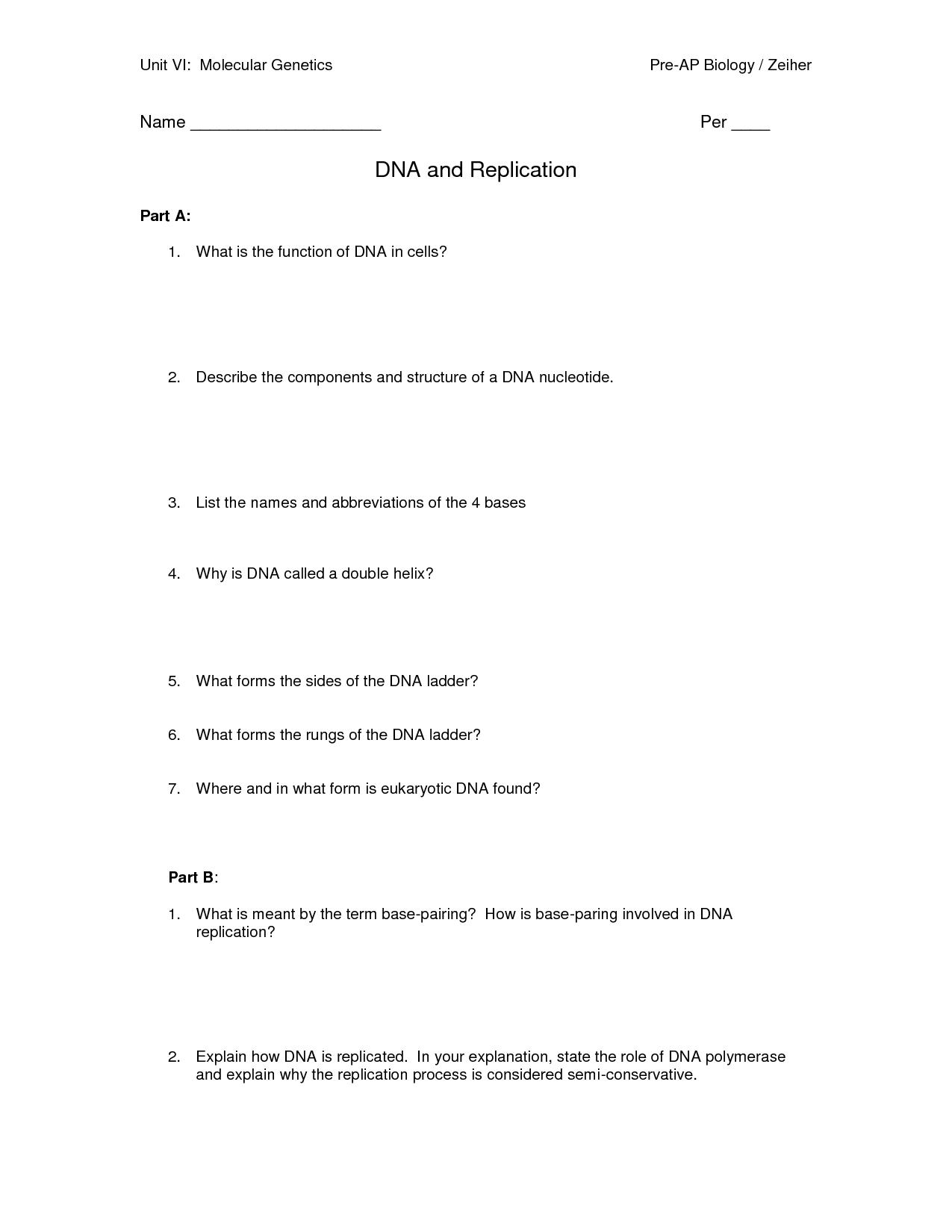 Worksheet Dna Structure And Function Worksheet Grass Fedjp Worksheet Study Site