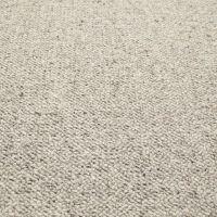 https://www.carpetright.co.uk/carpets/auckland-berber-loop ...