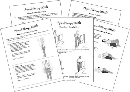 Sample handouts from the PT Toolkit. The PT Toolkit a