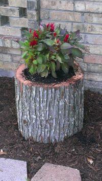 Tree Stump Flower Pot   Garden   Pinterest   Tree stump ...