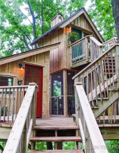 Bird barn treehouse pete nelson also tree house pinterest rh